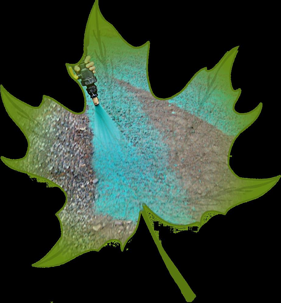 zakladanie trawnika rzeszow hydrosiew podkarpackie
